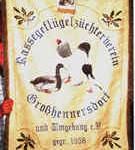 Vereinsfahne Großhennersdorf