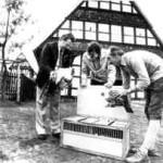 Das erste Geflügel zieht 1982 in das Freilichtmuseum Detmold ein. Wilfried Detering, Dr. Ulrich Großbaum, Gärtnermeister Hanke